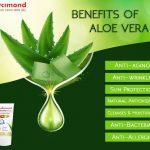 Aloe Vera Benefits Lycimond Aloe Vera Skin Gel