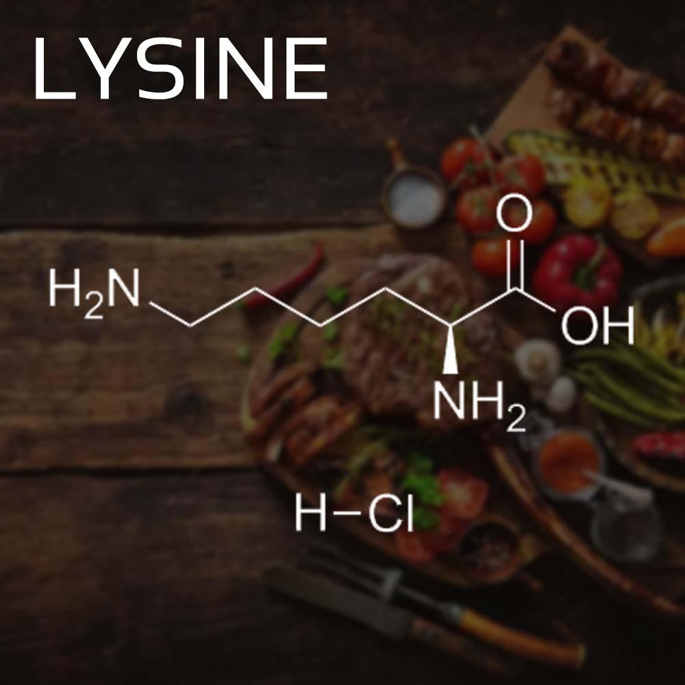 Lycimond L-Lysine Structure What is Lysine