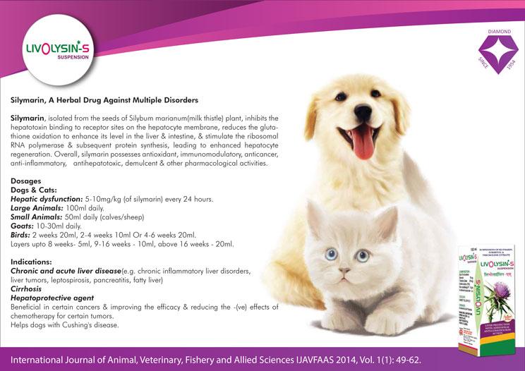 Silymarin Veterinary Medicine